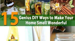 15 Genius DIY Möglichkeiten, um Ihr Zuhause zu machen, riechen Wunderbar