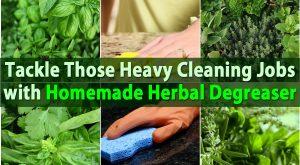 Tackle diese Heavy Cleaning Jobs mit hausgemachten pflanzlichen Entfetter