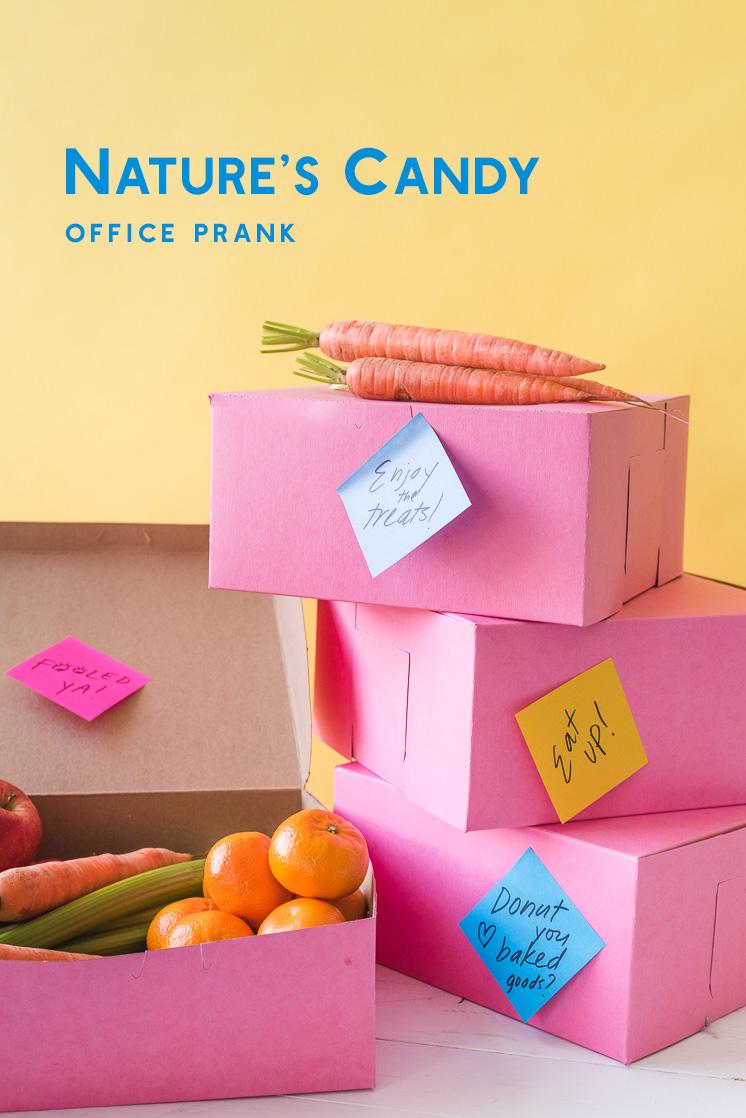 Der Süßigkeits-Büro-Streich der Natur