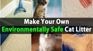 Riesige Geld sparen - Machen Sie Ihre eigenen umweltfreundlichen Katzenstreu
