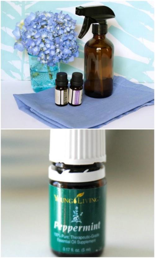 25 DIY Essential Oil Sprays brauchen Sie in Ihrem Haus jetzt