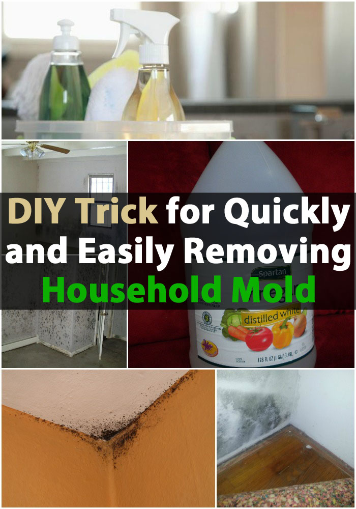 DIY-Trick zum schnellen und einfachen Entfernen von Haushaltsformen
