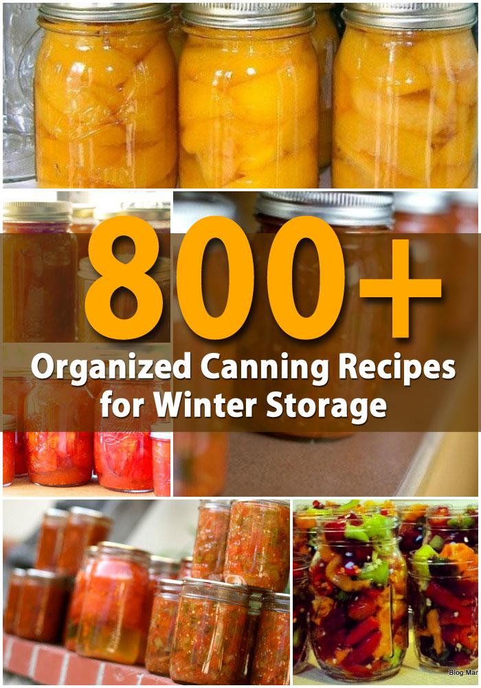 800+ organisierte Canning-Rezepte für die Winterlagerung