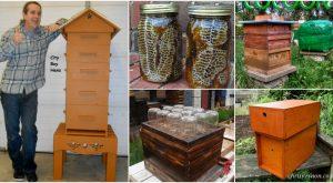 10 DIY Bienenstöcke, die Sie heute zu Ihrem Garten hinzufügen können