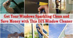 Holen Sie sich Ihre Windows Sparkling Clean und sparen Sie Geld mit diesem DIY Fensterputzer
